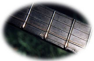 stealth banjo - 5th string enters at the 5th fret